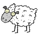 ingles-sheep