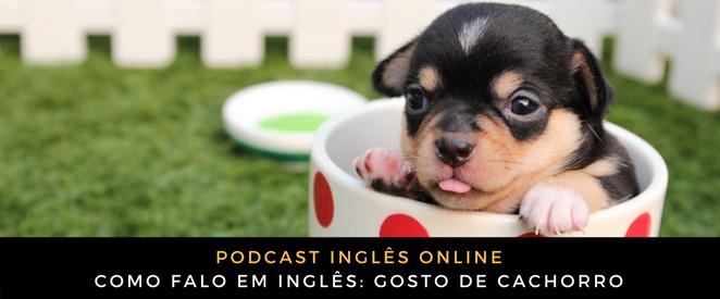 Como falo em inglês Gosto de cachorro