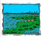 inglês: a swamp