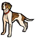cachorro em inglês