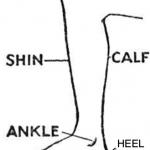 Como falo em inglês: canela e batata da perna