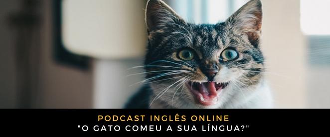 Inglês Online O gato comeu a sua língua