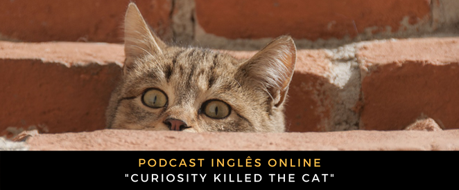 Inglês - Podcast Curiosity killed the cat